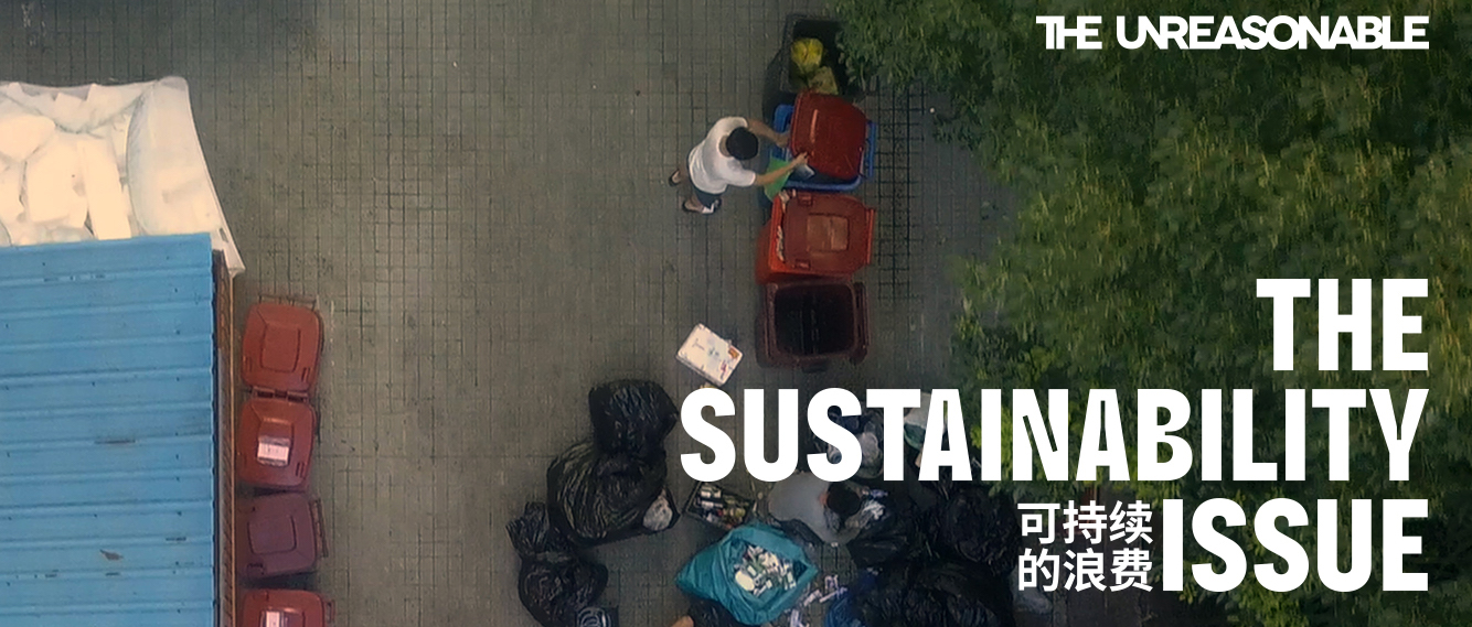The Unreasonable @The Sustainability Issue